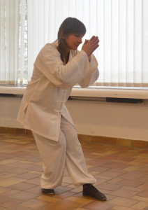 spectacle qi gong meteo (14)